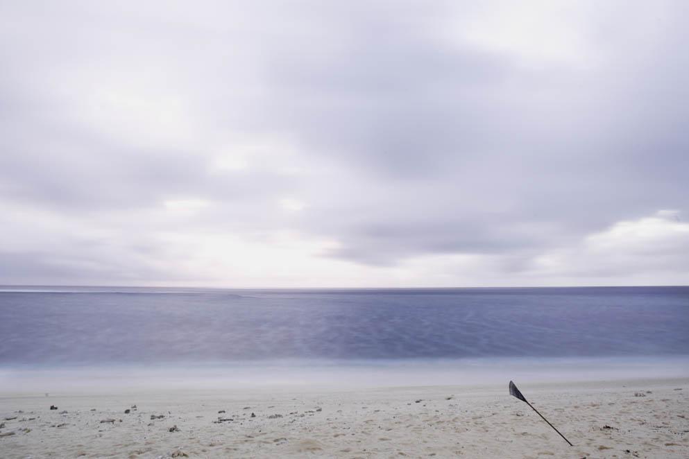 Beach Rake