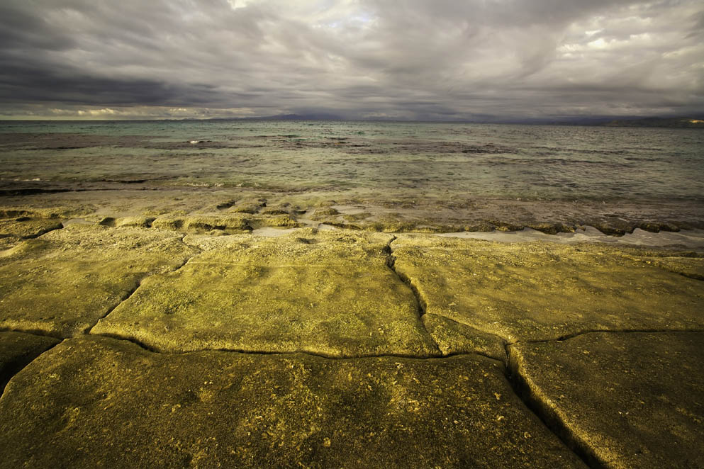 Namotu Reef