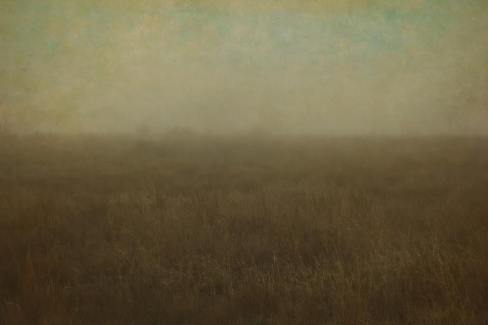 Upland Dawn